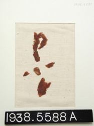 Textile, fragments of red twill