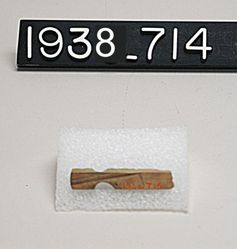 Bone Object Fragment