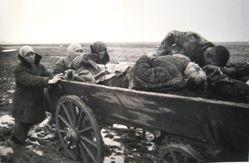 Carting the Dead, Kerch, Crimea, from The Great Patriotic War, Vol. I