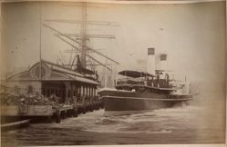 [P. J. S. Manly Beach Steamers], from the album [Sydney, Australia]