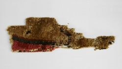 Wool Rug Fragment with Pile