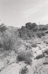 West Salt Creek, Mesa County, Colorado