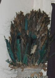 Headdress for the Bird Spirit, Wenilegagi