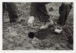Planting locust root cutting, Natchez Trace Project, Tennessee, 1936, Carl Mydans, 8a01547, from the portfolio Ground
