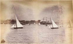 S. S. Australia, Sydney Harbor, from the album [Sydney, Australia]