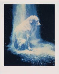 Dusted, from the portfolio: Elephant, Bad Dog, Dusted