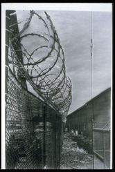 Untitled [Fence with Barbed Wire], from an installation work