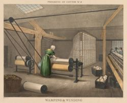 Progress of Cotton: # 8 - Warping & winding