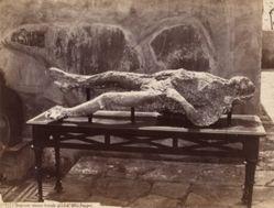 Impronte Umane, Pompei [Human Cast, Pompeii]