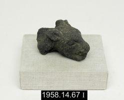 Feline fragment