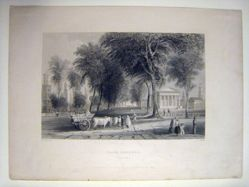 Bartlett's View of Yale College and the State House