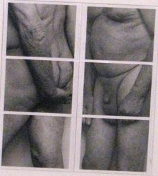 Untitled (Double Frieze Polaroid #4)