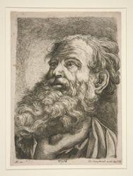 Male Head (of an Apostle?)