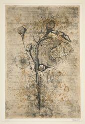 Le Tournesol (The Sunflower)
