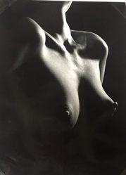 El Canto de Cisne (Breasts)
