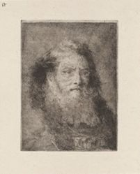 Old Man with Bare Head, from the Raccolta di Teste (Collection of Heads)