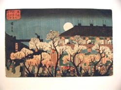 Night Viewing of Cherry Blossoms along the Nakanochō at Shin Yoshiwara, from the series Famous Places in the Eastern Capital