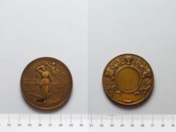 Bronze Medal from Belgium of Labor