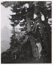 On Mount Ranier