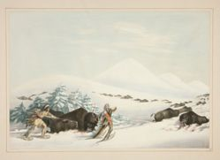 Buffalo Hunt, On Snow Shoes, pl. 15 from the North American Indian Portfolio
