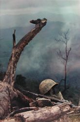 Hill 484, from the series: Larry Burrows: Vietnam, The American Intervention 1962 - 1968