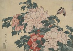Peonies and Butterfly, from an untitled series named Large Flowers