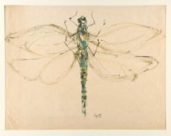 Untitled (Dragonfly)