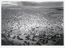 Landscape, from New Mexico Portfolio