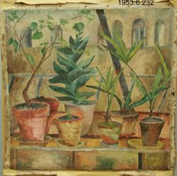 Still Life with Plants