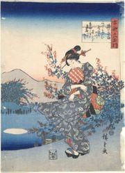 Noji: Six Tama Rivers