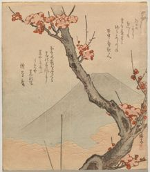 Plum Tree with Mount Fuji