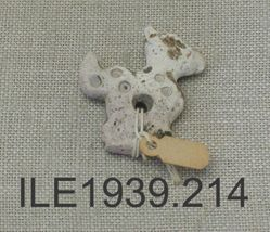 Shell amulet