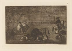 Les chiens laches sur le taureau (The Dogs Let Loose on the Bull), Plate C from La tauromaquia (third edition)