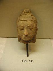 Head of Camea