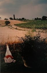 Sleeping Woman, from the portfolio Toscana