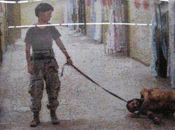 Googlegram 5: Abu Ghraib