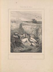 Un nid dans les blés, from the series Scènes de la vie intime