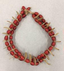 Necklace (Amazipho)
