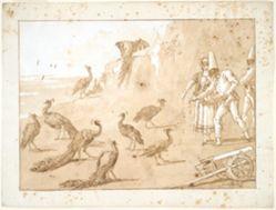 Punchinello Feeding the Peacocks