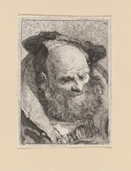 Bearded Old Man, from the Raccolta di Teste (Collection of Heads)