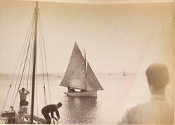 [Sailboat], from the album [Sydney, Australia]