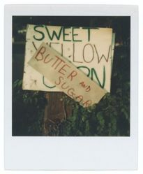 "Untitled [Sign: ""SWEET YELLOW CORN""]"
