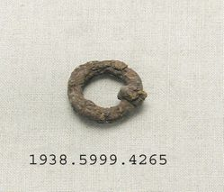 Iron ring shaped fragment