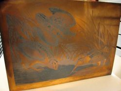 Copper plate for American Woodcock