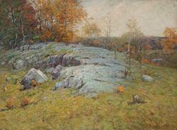 Rocks in Pasture land