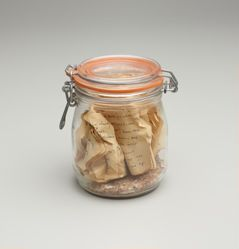 Preserved Book (Series No. 4)