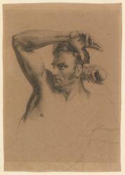 Male Half-length Nude