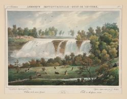 Falls on the Genesee Rivers. no. 37 in the series
