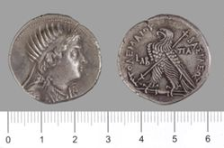 Tetradrachm of Ptolemy VIII Euergetes II (Physcon) from Paphos