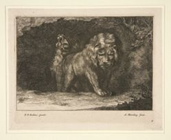 "Lions. From the series ""Variae Leonum Icones Pictae à Petro P. Rubens"""